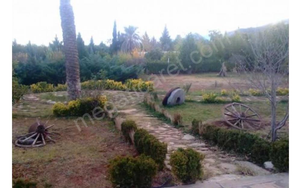 Antalya döşemealtı çığlıkta 10.000 m2 Arsa