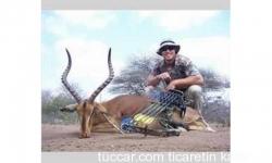 Güney Afrikada 10 gün Av Safari 5 Trofe dahil
